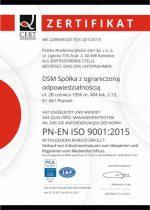 DSM Sp. zo.o.